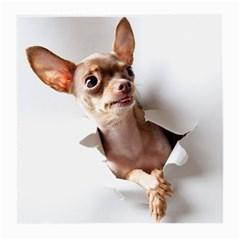 Chihuahua Glasses Cloth (Medium) by cutepetshop