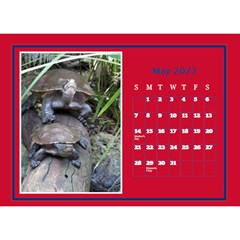 A Little Perfect Desktop Calendar (8 5x6) By Deborah   Desktop Calendar 8 5  X 6    Ilftinvongms   Www Artscow Com May 2018
