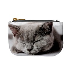 Cat By Divad Brown   Mini Coin Purse   Tmrwzjah9lrz   Www Artscow Com Front