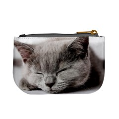 Cat By Divad Brown   Mini Coin Purse   Tmrwzjah9lrz   Www Artscow Com Back