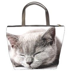 Cat By Divad Brown   Bucket Bag   Efrxgxmuf8xo   Www Artscow Com Back