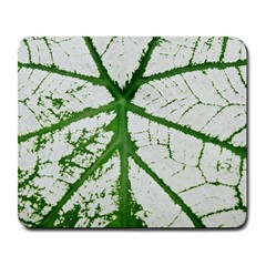 Leaf Patterns Large Mouse Pad (rectangle) by natureinmalaysia