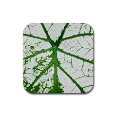 Leaf Patterns Drink Coaster (square) by natureinmalaysia