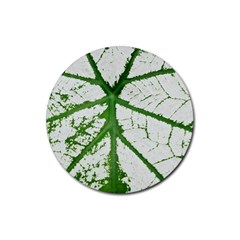 Leaf Patterns Drink Coasters 4 Pack (round) by natureinmalaysia