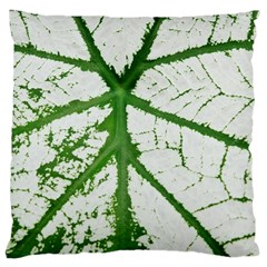 Leaf Patterns Large Cushion Case (one Side) by natureinmalaysia