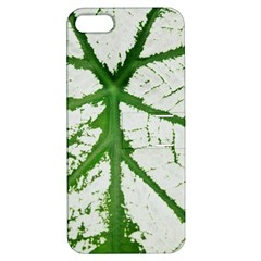 Leaf Patterns Apple Iphone 5 Hardshell Case With Stand by natureinmalaysia