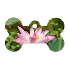A Pink Lotus Dog Tag Bone (two Sided) by natureinmalaysia