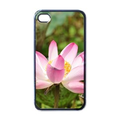 A Pink Lotus Apple Iphone 4 Case (black) by natureinmalaysia
