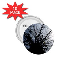An Old Tree 1 75  Button (10 Pack) by natureinmalaysia