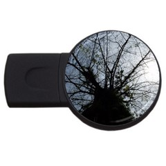 An Old Tree 4gb Usb Flash Drive (round) by natureinmalaysia