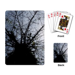 An Old Tree Playing Cards Single Design by natureinmalaysia