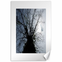 An Old Tree Canvas 24  X 36  (unframed)