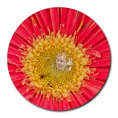 A Red Flower 8  Mouse Pad (round) by natureinmalaysia