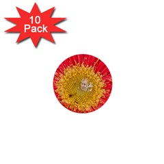 A Red Flower 1  Mini Button (10 Pack) by natureinmalaysia