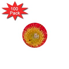 A Red Flower 1  Mini Button (100 Pack) by natureinmalaysia