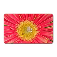 A Red Flower Magnet (rectangular) by natureinmalaysia
