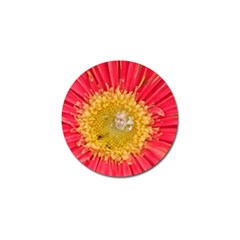 A Red Flower Golf Ball Marker by natureinmalaysia