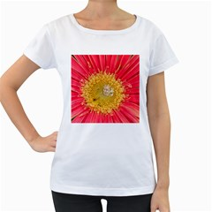 A Red Flower Womens' Maternity T Shirt (white) by natureinmalaysia