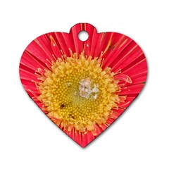 A Red Flower Dog Tag Heart (one Sided)  by natureinmalaysia
