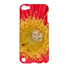 A Red Flower Apple Ipod Touch 5 Hardshell Case by natureinmalaysia