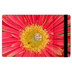 A Red Flower Apple Ipad 2 Flip Case by natureinmalaysia