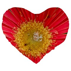 A Red Flower 19  Premium Heart Shape Cushion by natureinmalaysia