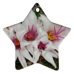 Bloom Cactus  Star Ornament by ADIStyle