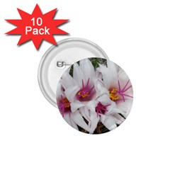 Bloom Cactus  1 75  Button (10 Pack) by ADIStyle