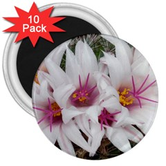 Bloom Cactus  3  Button Magnet (10 Pack) by ADIStyle