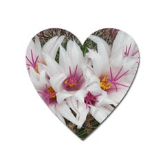 Bloom Cactus  Magnet (heart) by ADIStyle