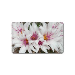Bloom Cactus  Magnet (name Card) by ADIStyle