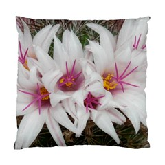Bloom Cactus  Cushion Case (one Side) by ADIStyle