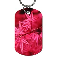 Red Autumn Dog Tag (two Sided)  by ADIStyle