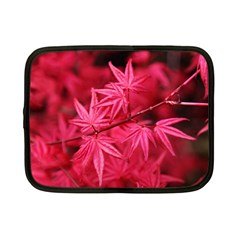 Red Autumn Netbook Case (small) by ADIStyle