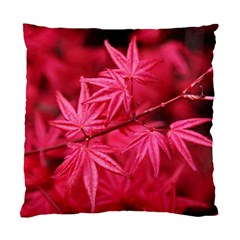 Red Autumn Cushion Case (two Sides) by ADIStyle