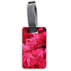 Red Autumn Luggage Tag (one Side) by ADIStyle