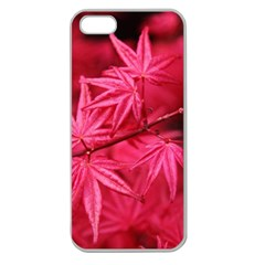 Red Autumn Apple Seamless Iphone 5 Case (clear) by ADIStyle