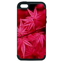 Red Autumn Apple Iphone 5 Hardshell Case (pc+silicone) by ADIStyle
