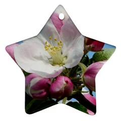 Apple Blossom  Star Ornament by ADIStyle