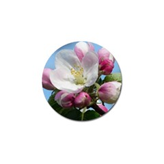 Apple Blossom  Golf Ball Marker 4 Pack by ADIStyle