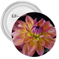 Dahlia Garden  3  Button by ADIStyle