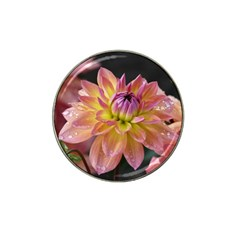 Dahlia Garden  Golf Ball Marker 4 Pack (for Hat Clip) by ADIStyle