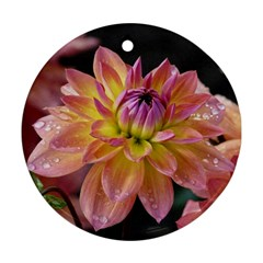 Dahlia Garden  Round Ornament (two Sides) by ADIStyle