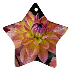 Dahlia Garden  Star Ornament (two Sides) by ADIStyle