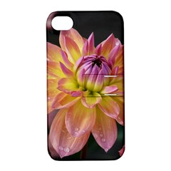 Dahlia Garden  Apple Iphone 4/4s Hardshell Case With Stand by ADIStyle
