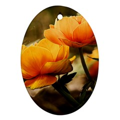Flowers Butterfly Oval Ornament (two Sides) by ADIStyle