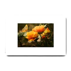 Flowers Butterfly Small Door Mat by ADIStyle