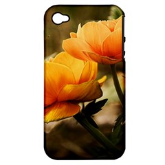 Flowers Butterfly Apple Iphone 4/4s Hardshell Case (pc+silicone) by ADIStyle