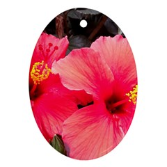 Red Hibiscus Oval Ornament by ADIStyle