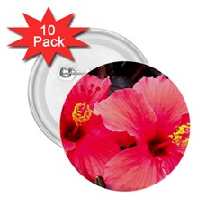 Red Hibiscus 2 25  Button (10 Pack) by ADIStyle